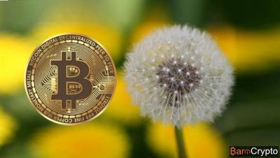 Les développeurs Bitcoin conçoivent la version prototype de Dandelion