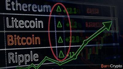 Chute du marché crypto : A quand la fin de l'hémorragie ?